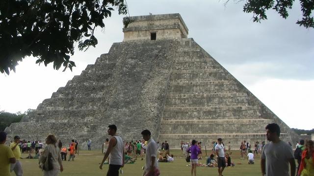 Maya 336